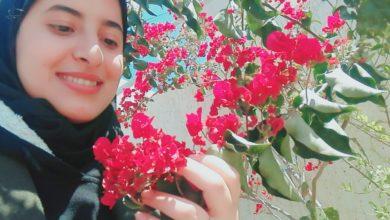 Photo of لا ندم بعد الرحيل